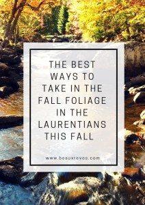 fall-foliage-laurentians