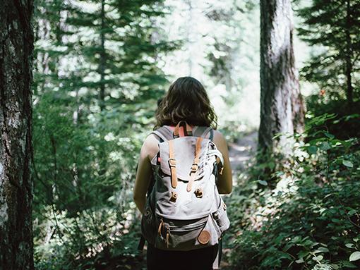 Hiking Activites