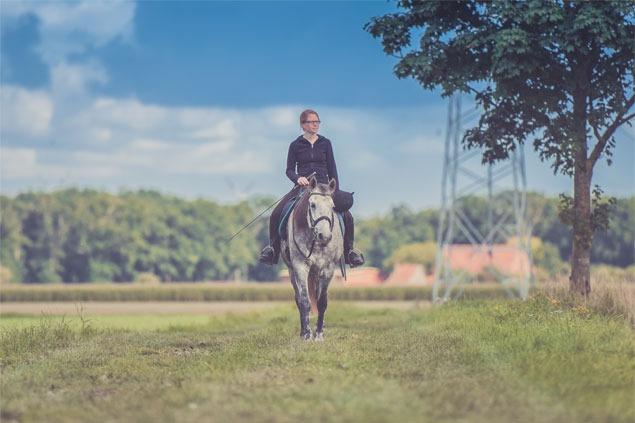 Horseback Trail Riders
