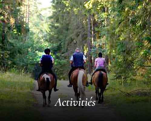 09-activities-FR