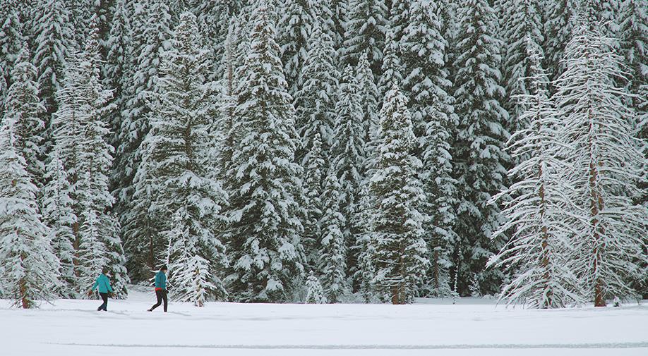 9 Winter Activities in the Laurentians