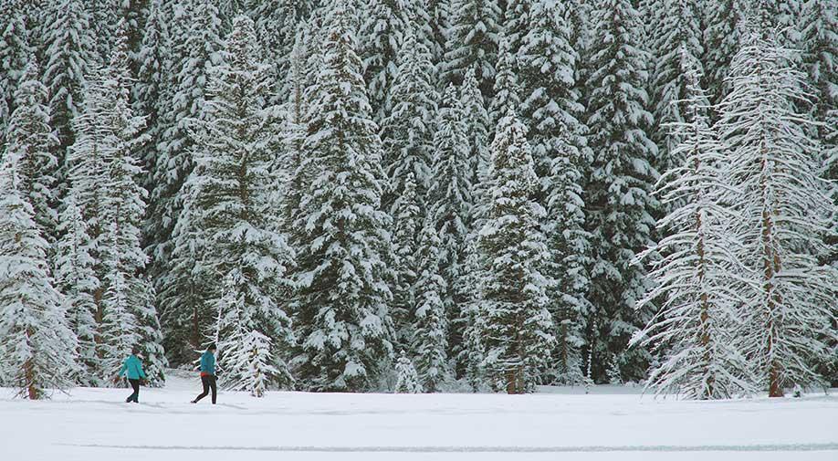 9 activités hiver laurentides